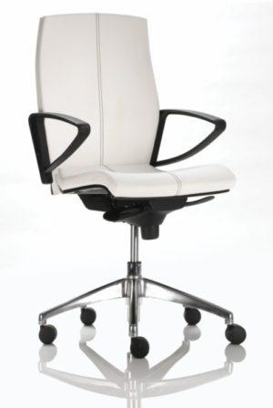 דגם כסא עבודה פרו אקטיב גב רגיל